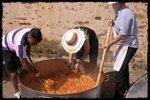 Día de Trashumancia en Los Campos. 2011